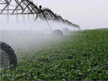 Halfwassen Irrigated Farm