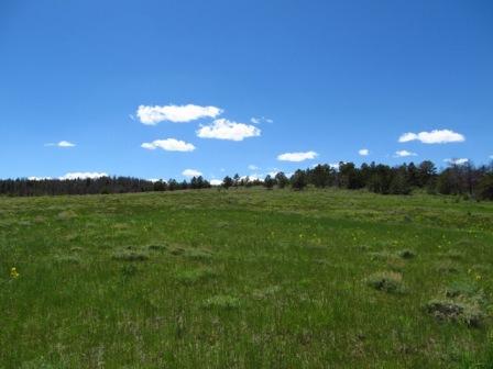Homestead 7 Fish Creek Ranch Preserve