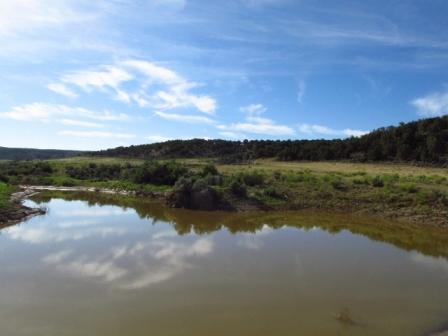 Brady Ranch