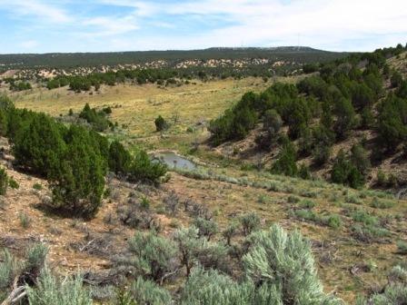 Elk Springs Acreage