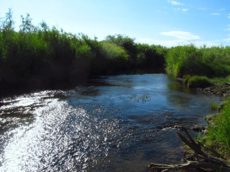 Spring Creek Acreage